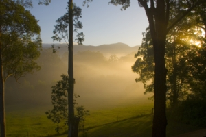 Morning Sunrise near Bellingen